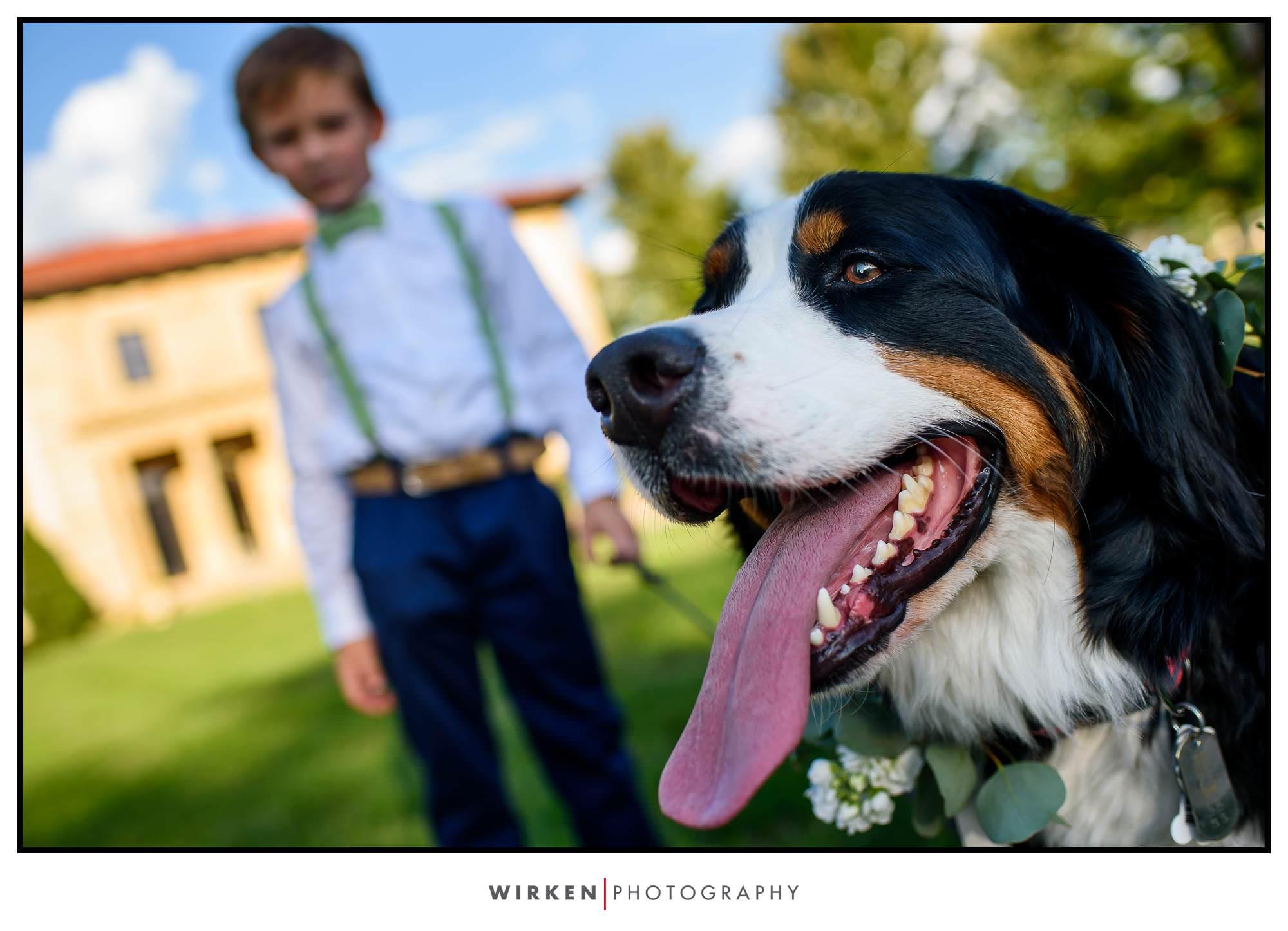 Cute dog at Unity Village wedding in Kansas City